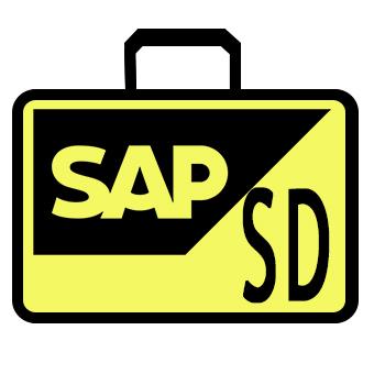 corso SAP SD